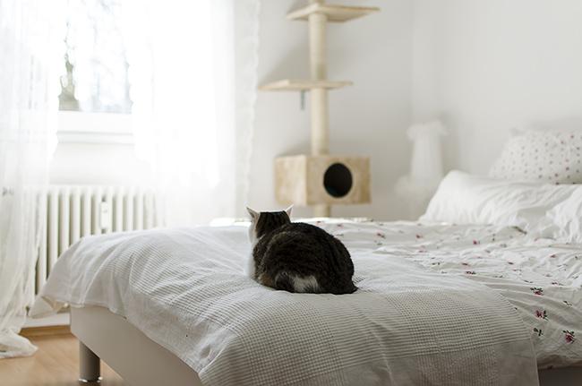 Blogger-Einrichtung-Roomtour-Interior-Ikea