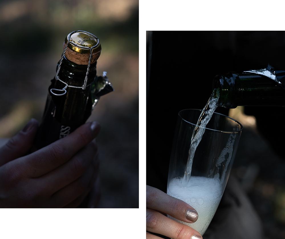Weine der Loire-Frankreich Loire Tal-Weinanbau Frankreich-Reiseblog-andysparkles