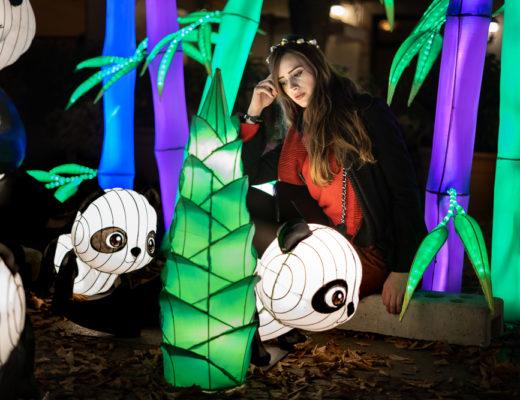 Portraitfotografie bei Nacht-Peoplefotografie bei Nacht-Fotografie Tipps im Winter-Berlin Festival of Lights-Berlinblog-Lifestyleblog-andysparkles