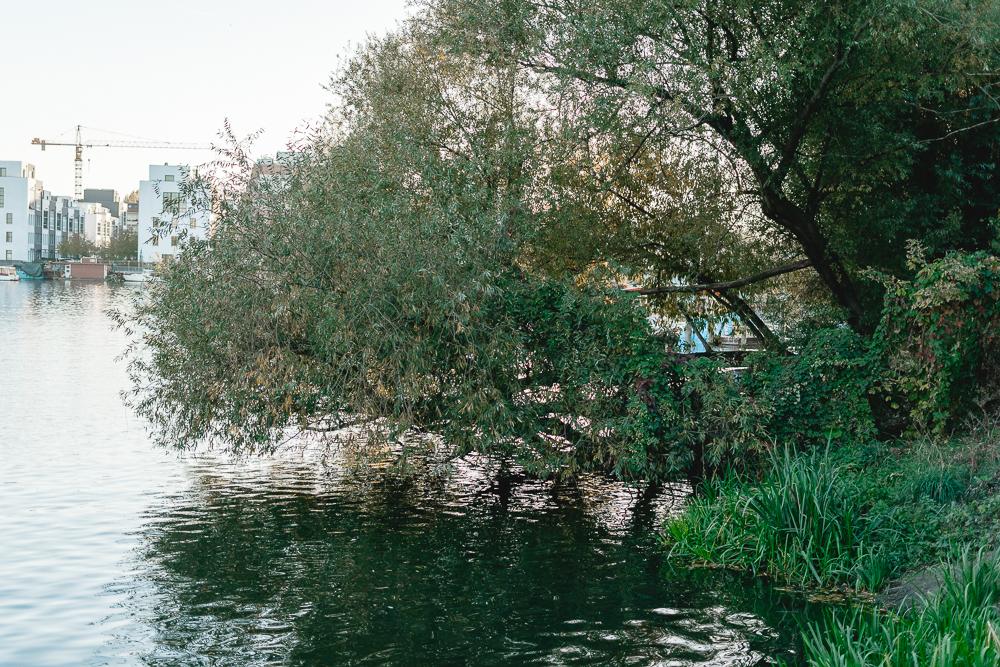 Grünes Berlin entdecken-Rummelsburger Bucht-Berlinblog-andysparkles