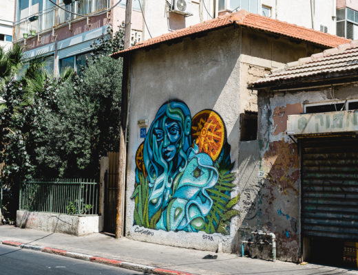 Street Art in Tel Aviv-Israel Graffiti-Urlaub in Tel Aviv-Graffiti Tour Tel Aviv