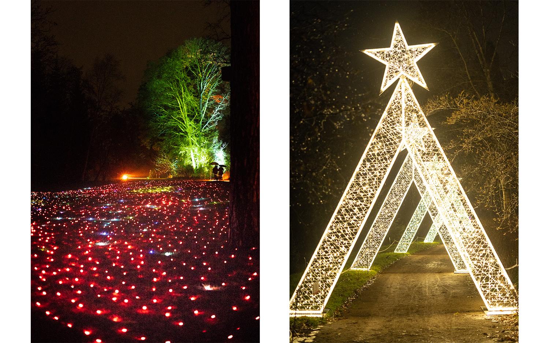 Erlebe den Winter in Berlin-Weihnachtsmarkt Berlin-Christmas Garden-Botanischer Garten Berlin Winter-Berlinblog-andysparkles