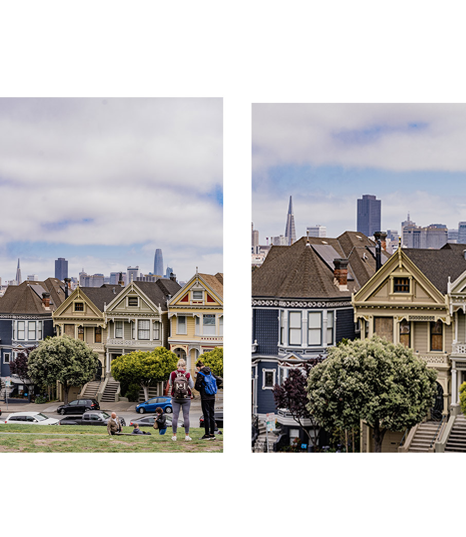 Collage Painted Ladies