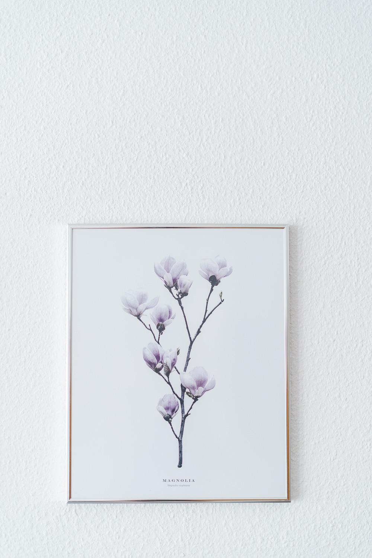 Magnolien Poster