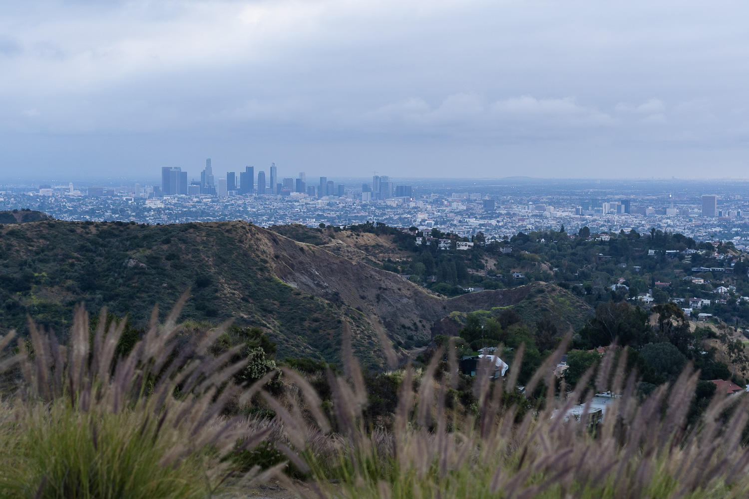 Aussicht Hollywood Hills
