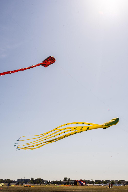 Drachen steigen lassen Tempelhofer Feld