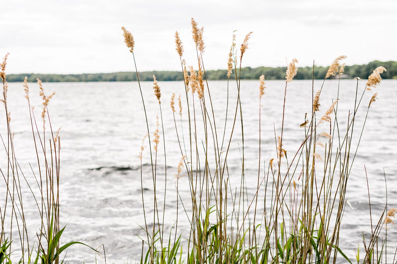 Tegeler See