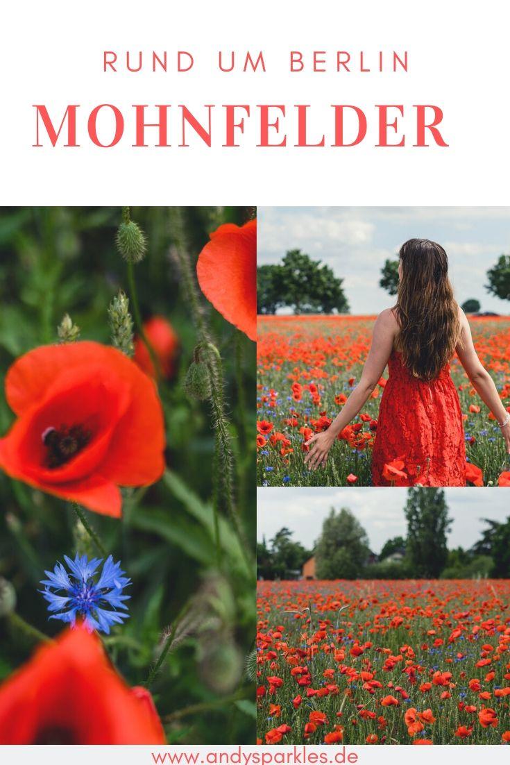 Mohnfelder in Berlin