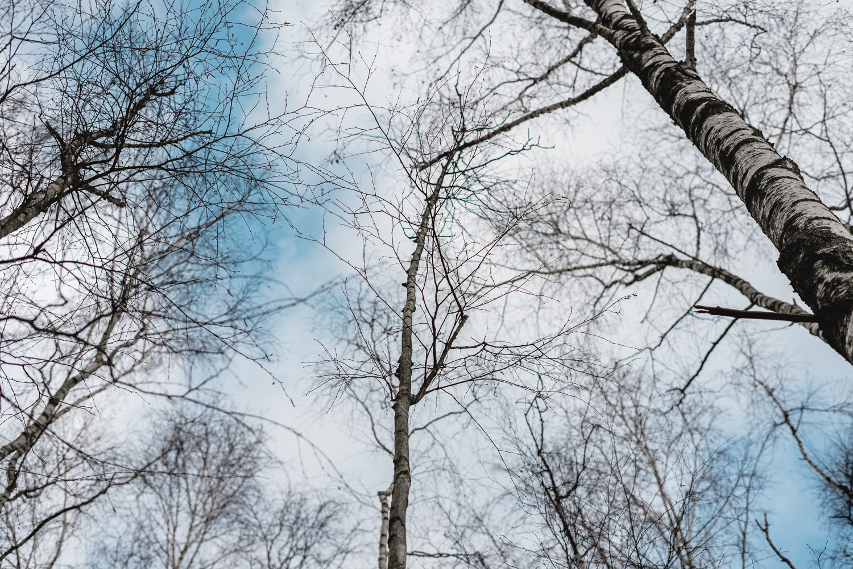 Mikroabenteuer in der Natur