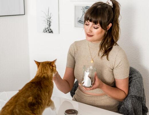 DIY Leckerli-Dose für Katzen
